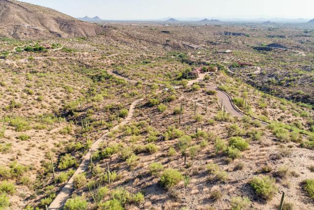 40741 N Longhorn Drive, Scottsdale, AZ 85262 (MLS #5527871) :: Brett Tanner Home Selling Team