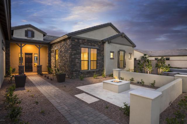 17690 E Bronco Drive, Queen Creek, AZ 85142 (MLS #5592898) :: Occasio Realty