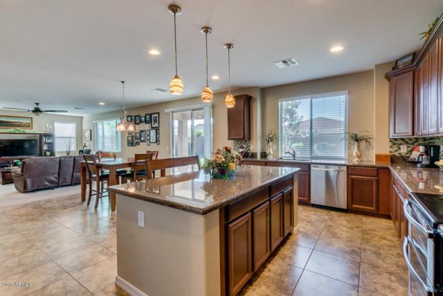 4420 W Goldmine Mountain Drive, Queen Creek, AZ 85142 (MLS #5617316) :: RE/MAX Home Expert Realty