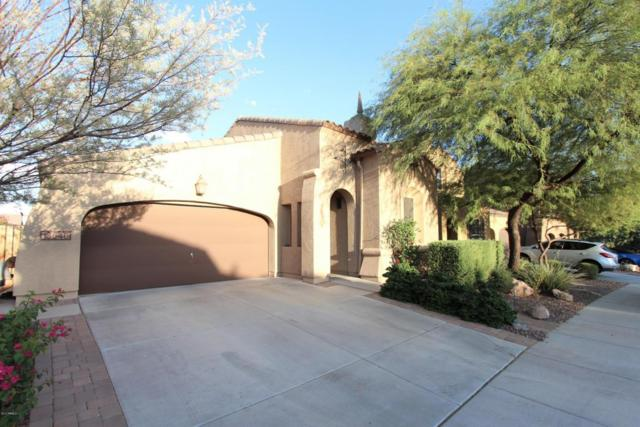 13640 W Jesse Red Drive, Peoria, AZ 85383 (MLS #5628419) :: Kortright Group - West USA Realty