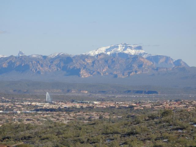 16205 N Desert Fox Parkway, Fountain Hills, AZ 85268 (MLS #5630092) :: Yost Realty Group at RE/MAX Casa Grande