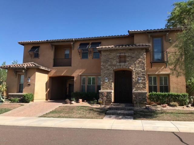 8437 W Paso Trail, Peoria, AZ 85383 (MLS #5644671) :: The Laughton Team