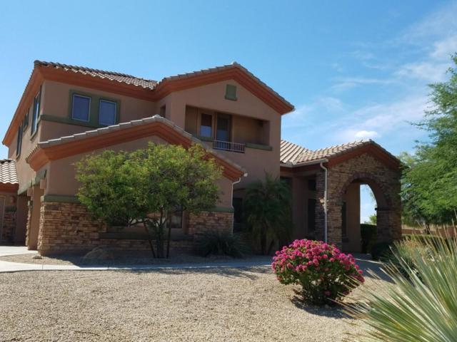 10304 N 179TH Drive, Waddell, AZ 85355 (MLS #5645916) :: The AZ Performance Realty Team