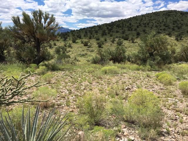 000 Harris Valley Ranch Road, Seligman, AZ 86337 (MLS #5658537) :: Scott Gaertner Group
