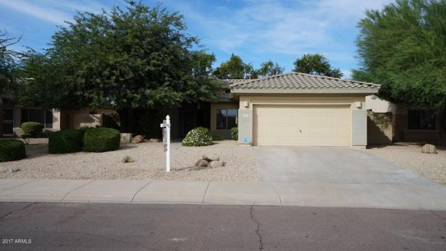 13272 W Edgemont Avenue, Goodyear, AZ 85395 (MLS #5671287) :: Kortright Group - West USA Realty