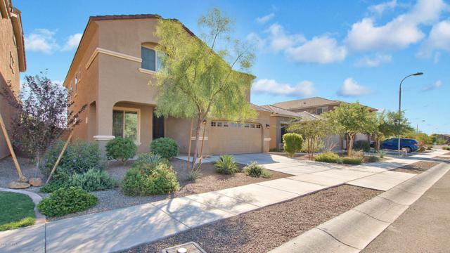 6773 W Charter Oak Road, Peoria, AZ 85381 (MLS #5674119) :: Sibbach Team - Realty One Group
