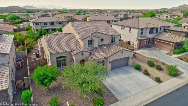 13337 W Jesse Red Drive, Peoria, AZ 85383 (MLS #5675116) :: Rodney Barnes Real Estate