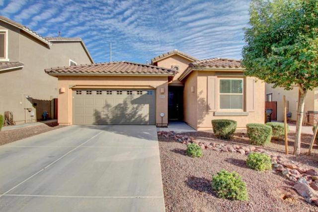 5547 S Joshua Tree Lane, Gilbert, AZ 85298 (MLS #5679027) :: Occasio Realty