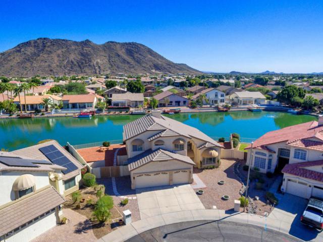 5563 W Irma Lane, Glendale, AZ 85308 (MLS #5680529) :: Essential Properties, Inc.