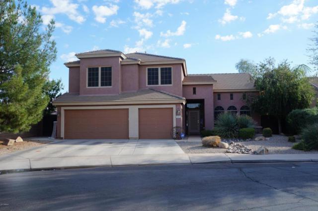 3027 S Wildrose, Mesa, AZ 85212 (MLS #5681575) :: Yost Realty Group at RE/MAX Casa Grande