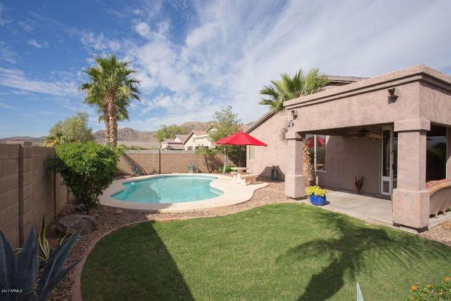 1815 W Nighthawk Way, Phoenix, AZ 85045 (MLS #5686059) :: Yost Realty Group at RE/MAX Casa Grande