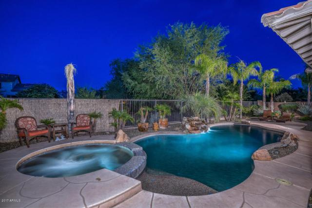 30247 N 124th Drive, Peoria, AZ 85383 (MLS #5686414) :: Occasio Realty