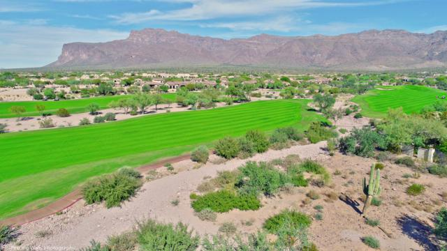 3540 S First Water Trail, Gold Canyon, AZ 85118 (MLS #5687406) :: The Kenny Klaus Team