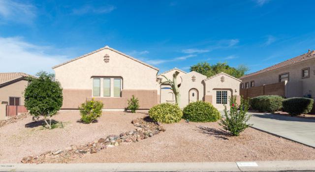 4391 S Primrose Drive, Gold Canyon, AZ 85118 (MLS #5691619) :: Yost Realty Group at RE/MAX Casa Grande