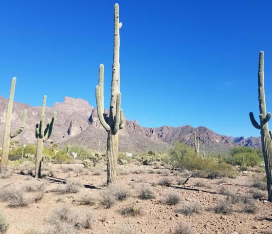 800 N Prospector Road, Apache Junction, AZ 85119 (MLS #5695952) :: Yost Realty Group at RE/MAX Casa Grande