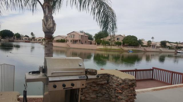 20262 N 51ST Drive, Glendale, AZ 85308 (MLS #5697250) :: Essential Properties, Inc.