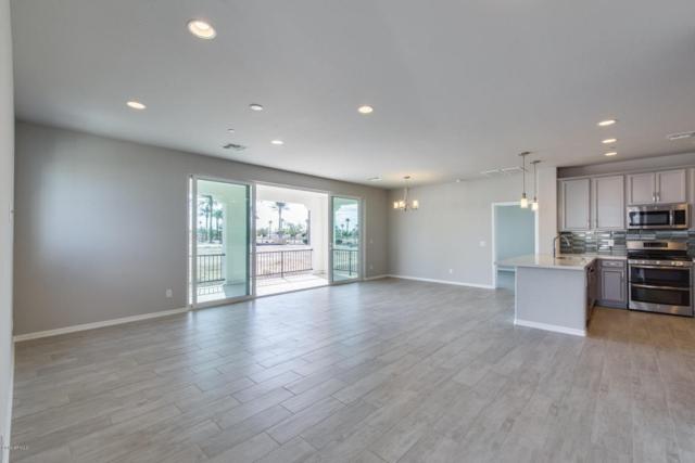 14200 W Village Parkway #116, Litchfield Park, AZ 85340 (MLS #5698981) :: Keller Williams Legacy One Realty