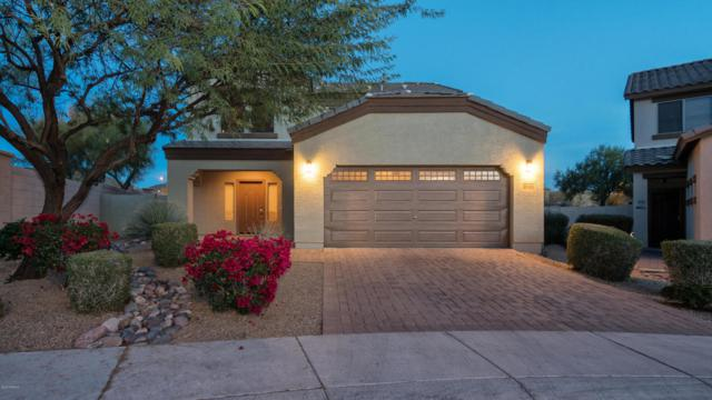 29307 N 23RD Drive, Phoenix, AZ 85085 (MLS #5701380) :: Kortright Group - West USA Realty