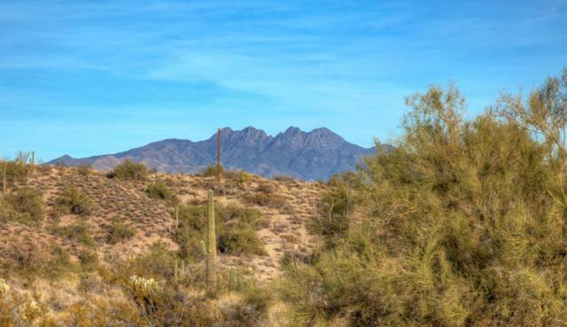 11800 N Thirsty Earth Trail, Fort McDowell, AZ 85264 (MLS #5701434) :: Santizo Realty Group