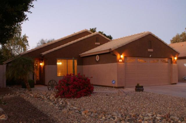 8206 W Clara Lane, Peoria, AZ 85382 (MLS #5701593) :: The Laughton Team