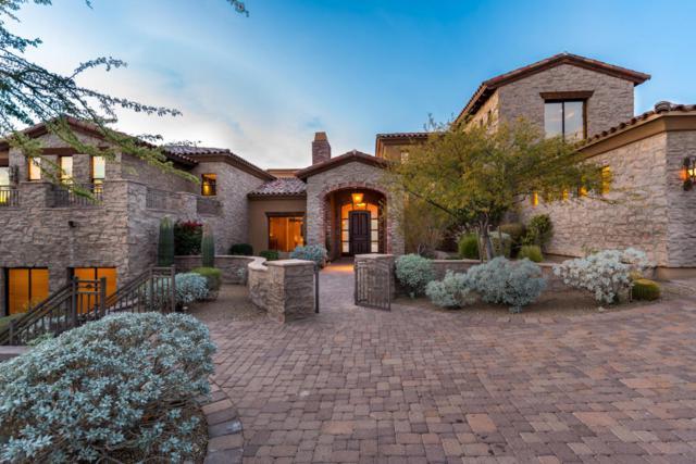 13808 S Canyon Drive, Phoenix, AZ 85048 (MLS #5704055) :: Yost Realty Group at RE/MAX Casa Grande