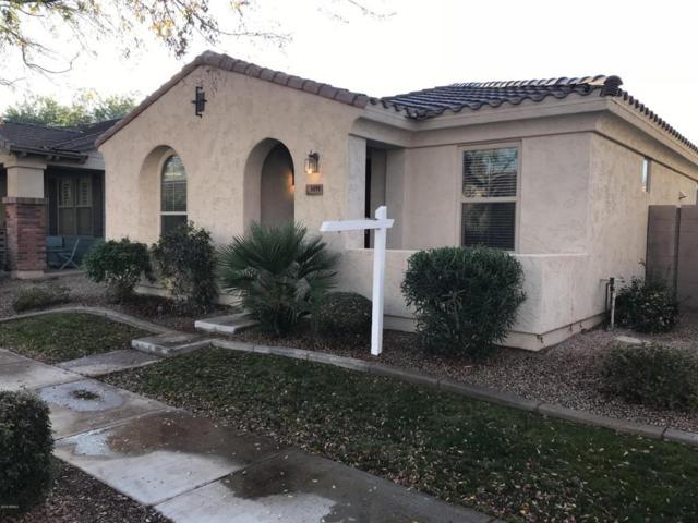 3499 E Windsor Drive, Gilbert, AZ 85296 (MLS #5704059) :: Yost Realty Group at RE/MAX Casa Grande