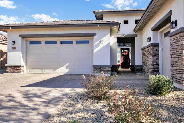 5215 N 145th Drive, Litchfield Park, AZ 85340 (MLS #5704548) :: Occasio Realty