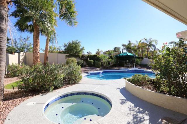 10856 E Palomino Road, Scottsdale, AZ 85259 (MLS #5706672) :: RE/MAX Excalibur