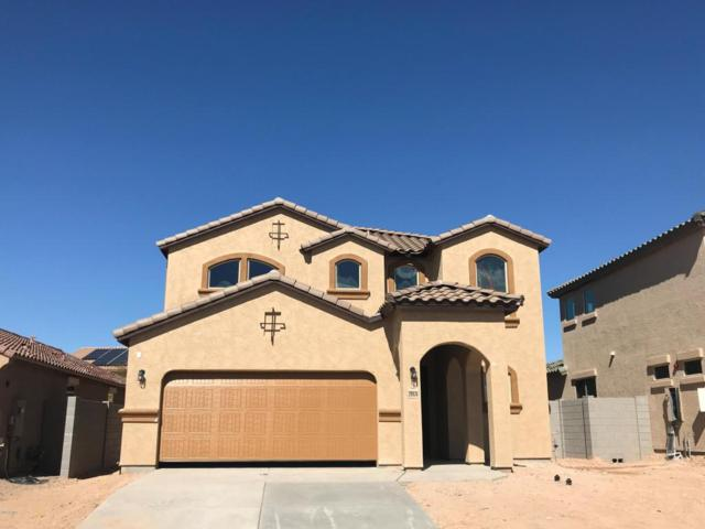 29926 N 120TH Drive, Peoria, AZ 85383 (MLS #5708761) :: Occasio Realty