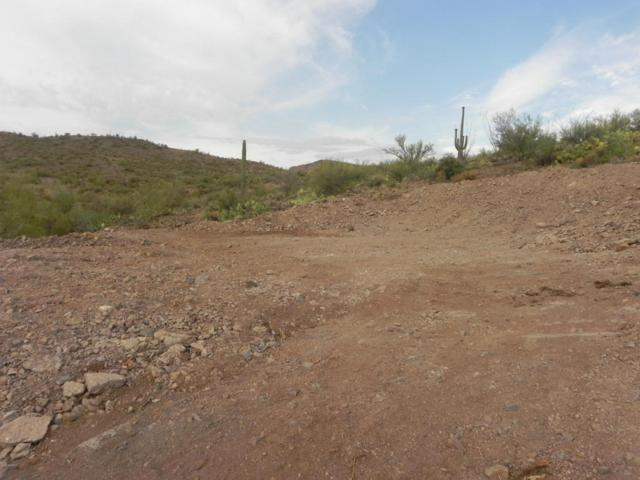 0 N Cow Creek Lot 12 Parcel C Road, Morristown, AZ 85342 (MLS #5709929) :: The W Group