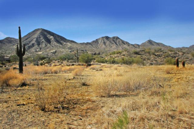 14352 E Desert Tortoise Trail, Fountain Hills, AZ 85268 (MLS #5711242) :: Yost Realty Group at RE/MAX Casa Grande