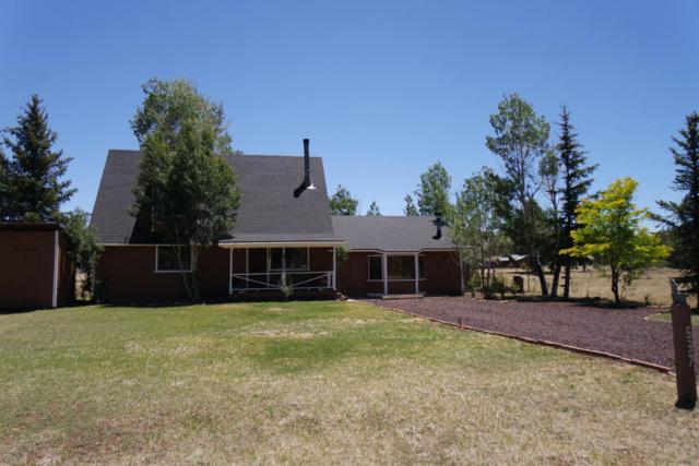 537 N Skylane Road, Pinetop, AZ 85935 (MLS #5716549) :: Occasio Realty
