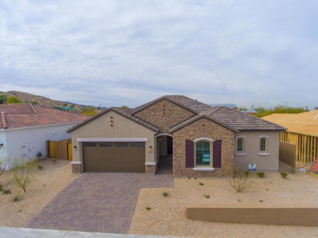 7714 S 42nd Way, Phoenix, AZ 85042 (MLS #5717935) :: My Home Group