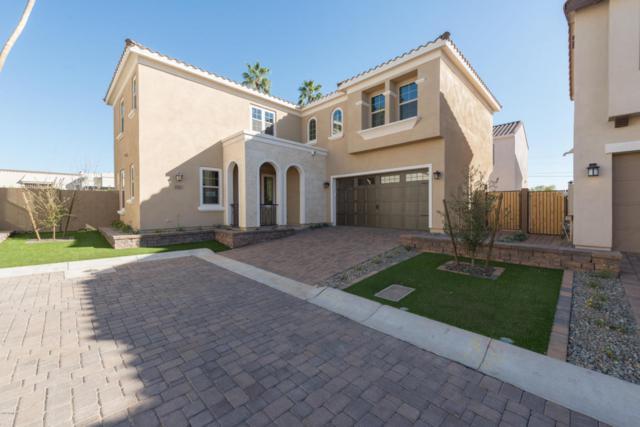 3321 N 25TH Place, Phoenix, AZ 85016 (MLS #5718602) :: Occasio Realty