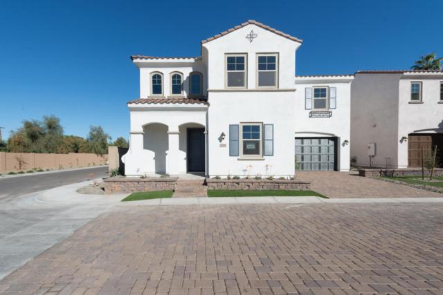 3315 N 25TH Place, Phoenix, AZ 85016 (MLS #5718648) :: Occasio Realty