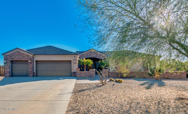 28535 N 172ND Drive, Surprise, AZ 85387 (MLS #5721630) :: Occasio Realty