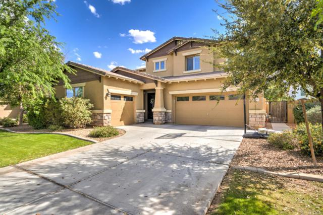 3965 E Mesquite Street, Gilbert, AZ 85296 (MLS #5729893) :: Occasio Realty