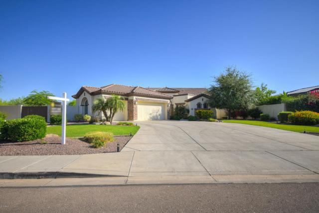 18305 W Montebello Avenue W, Litchfield Park, AZ 85340 (MLS #5731389) :: The Everest Team at My Home Group