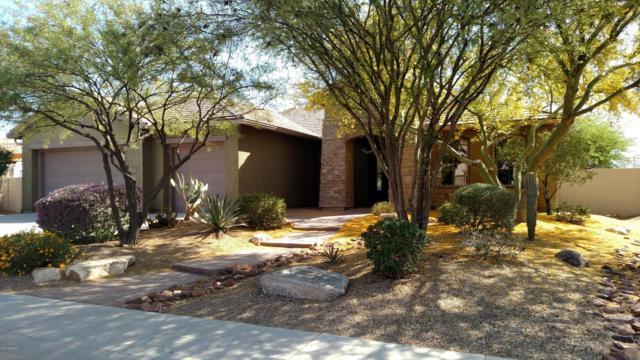 4820 W Cavalry Road, New River, AZ 85087 (MLS #5733129) :: Devor Real Estate Associates