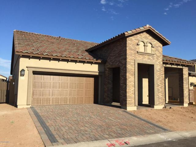 2065 N Red Cliff, Mesa, AZ 85207 (MLS #5738575) :: My Home Group