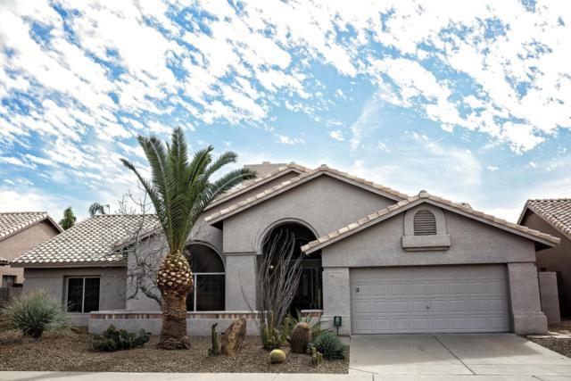 16421 N 49TH Street N, Scottsdale, AZ 85254 (MLS #5738637) :: Occasio Realty