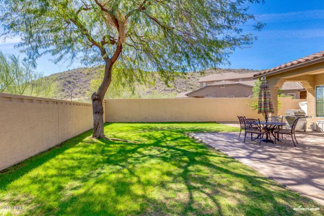 25919 N 84TH Drive, Peoria, AZ 85383 (MLS #5739912) :: My Home Group