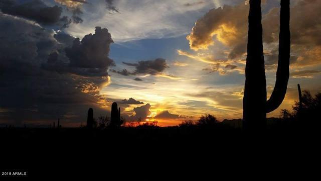 6090 E Roundup Street, Apache Junction, AZ 85119 (MLS #5740506) :: Yost Realty Group at RE/MAX Casa Grande