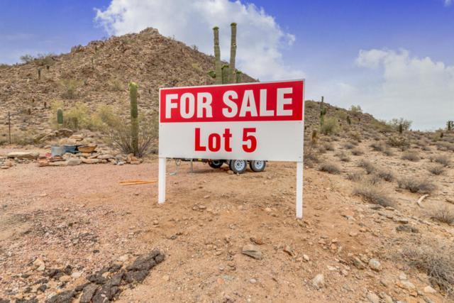 0 N Pamela Lot E Drive, Queen Creek, AZ 85142 (MLS #5742002) :: My Home Group