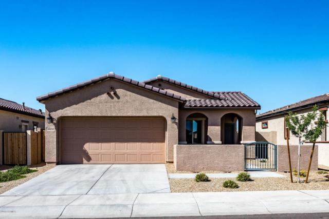 18010 W Cedarwood Lane, Goodyear, AZ 85338 (MLS #5747377) :: Occasio Realty