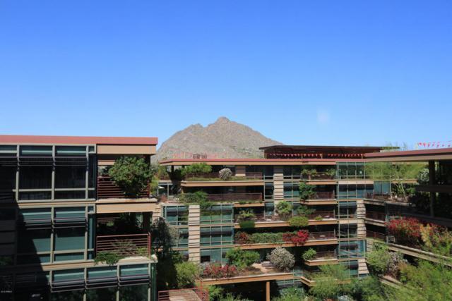 7137 E Rancho Vista Drive #7008, Scottsdale, AZ 85251 (MLS #5748095) :: The Laughton Team