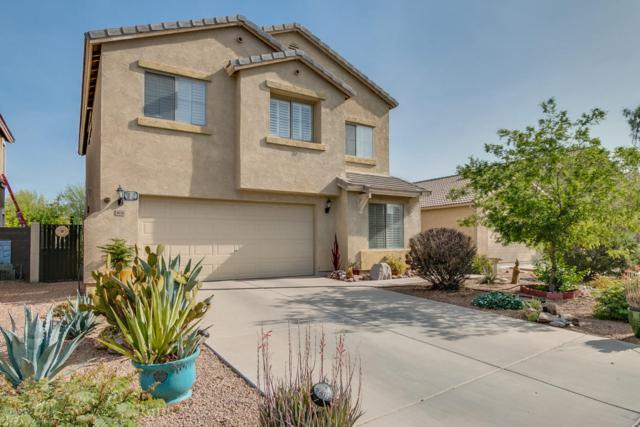 1070 W Desert Basin Drive, San Tan Valley, AZ 85143 (MLS #5748440) :: The Everest Team at My Home Group