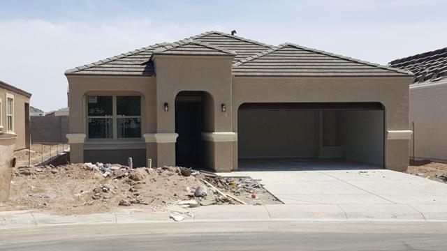 42147 W Noreen Road, Maricopa, AZ 85138 (MLS #5748497) :: The Wehner Group