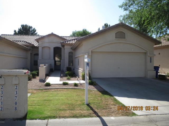 23708 S Harmony Way, Sun Lakes, AZ 85248 (MLS #5752353) :: The Daniel Montez Real Estate Group