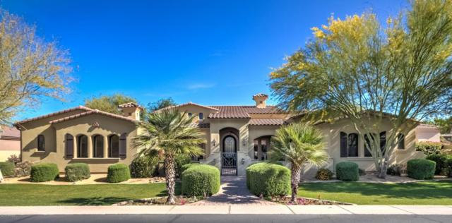 2638 E Locust Drive, Chandler, AZ 85286 (MLS #5755980) :: Arizona Best Real Estate